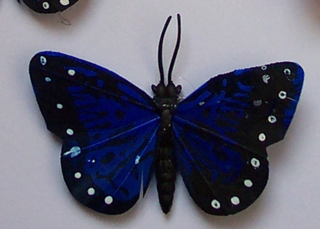 Blue Butterfly Fridge Magnet