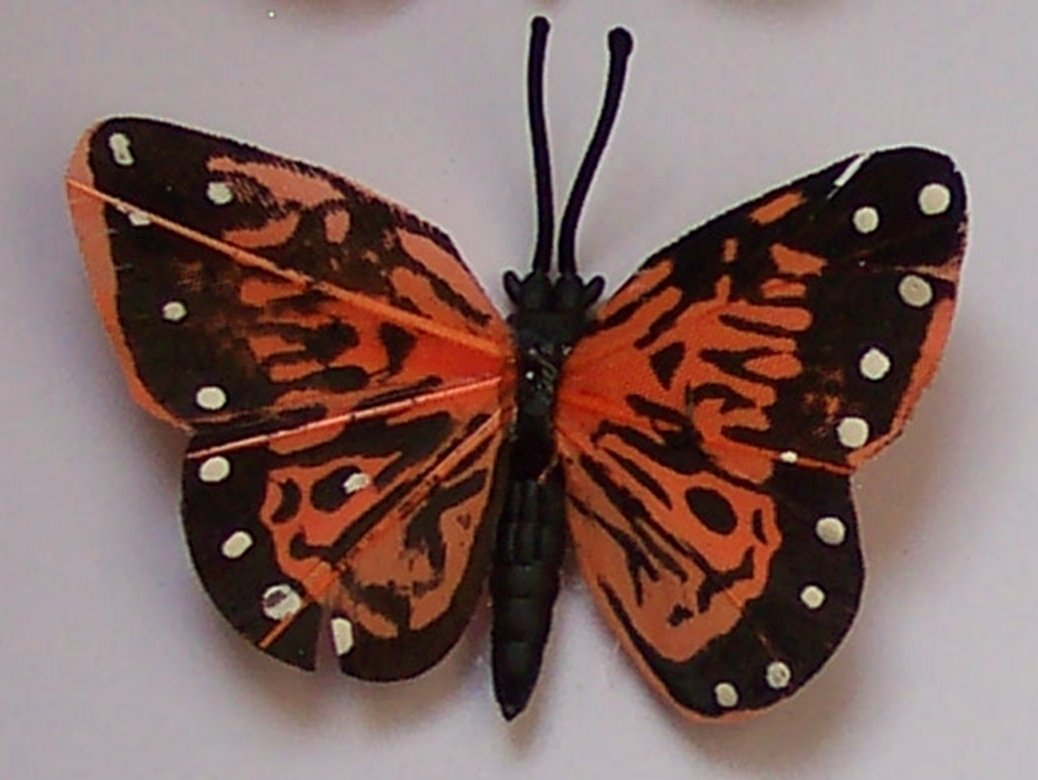 Orange Butterfly Fridge Magnet