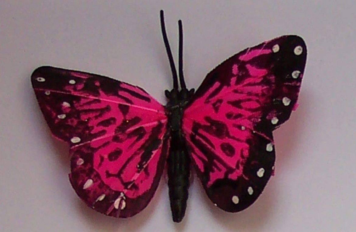 Pink Butterfly Fridge Magnet