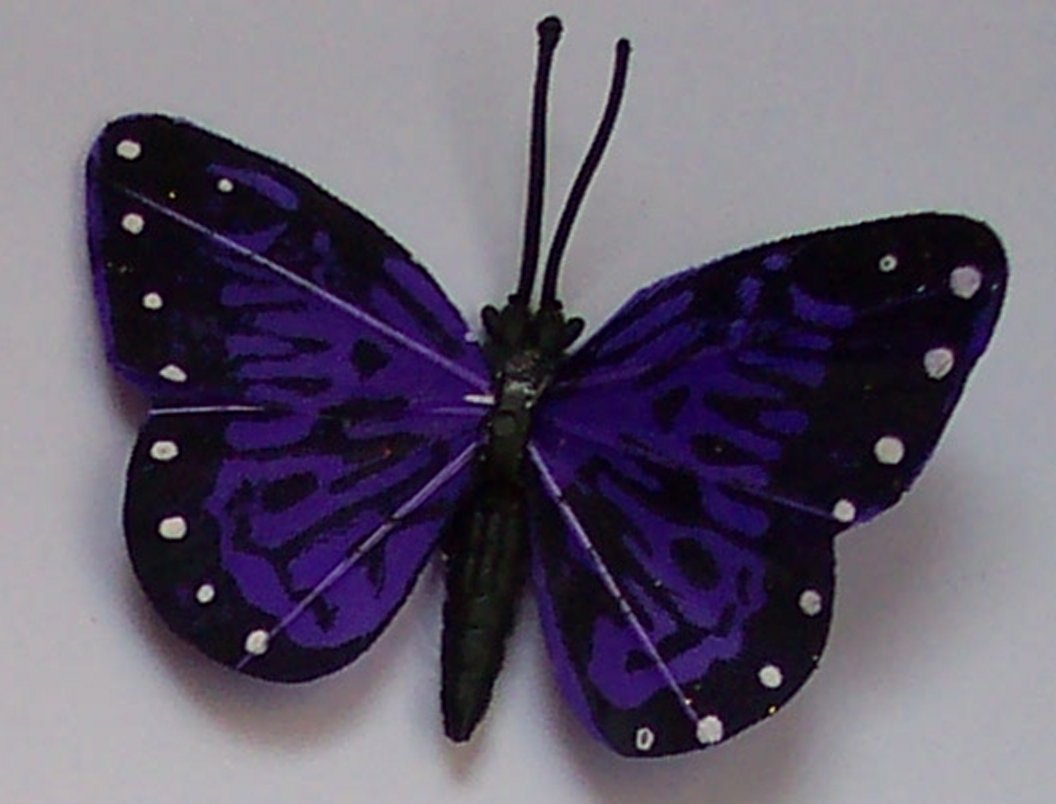 Purple Butterfly Fridge Magnet
