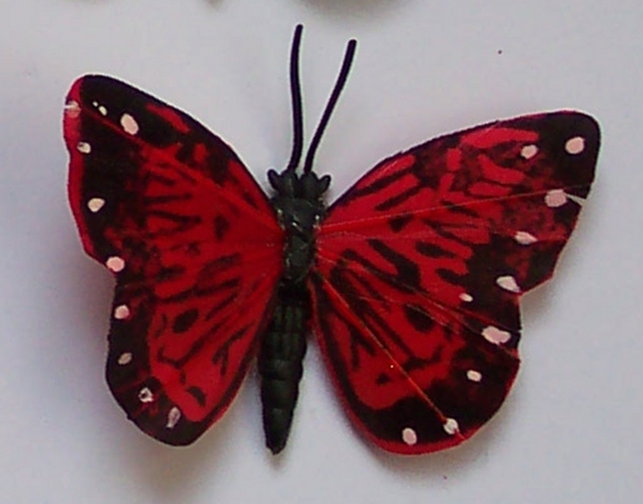 Red Butterfly Fridge Magnet